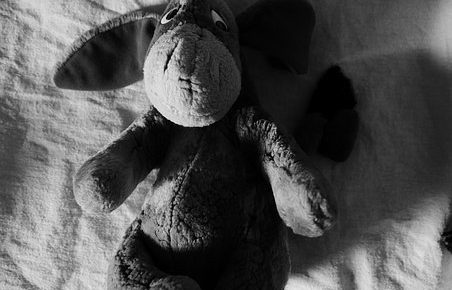 Picture of the stuffed animal eeyore from pixabay