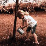 Girl watering a tree from Unsplash-Pedro Kummel