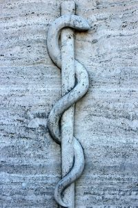 Snake on a poll in stone