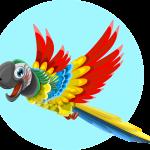 parrot_graphicMama_pixabay