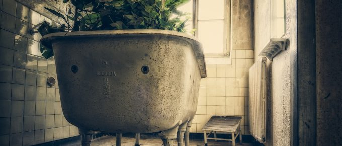Old Ruined Bathtub with flowers by Peter H, Pixabay
