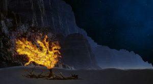 burning bush image by jeffjacobs1990, pixabay